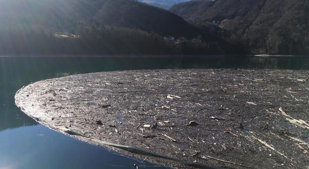 Il lago di Barcis ingombro di detriti e tronchi di alberi caduti