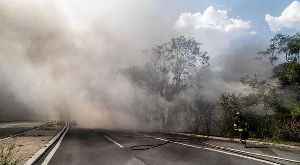 Roma, grosso incendio sull'Olimpica e timori tra i residenti: «L'aria è irrespirabile»