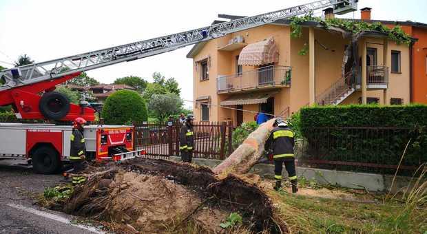 L'albero finito su una casa ad Abano