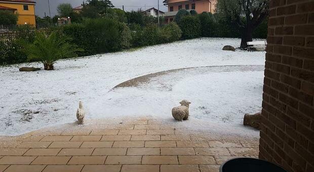 Il temporale si abbatte su Ancona: doppia grandinata con chicchi come noci, sottopassi allagati e incidenti