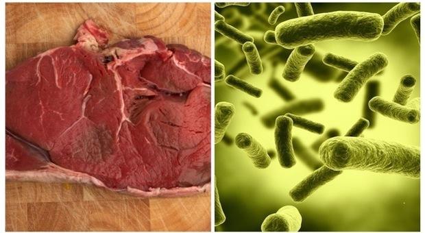Listeria, i consigli per evitare le intossicazioni: cuocere gli alimenti a più di 65 gradi