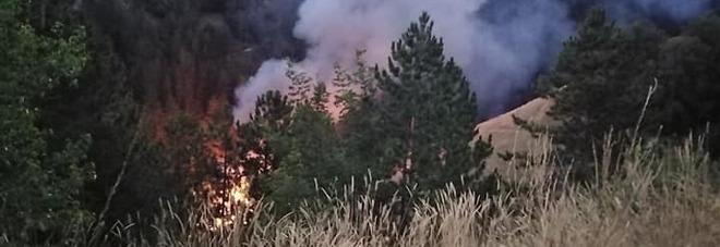 Incendio in un capannone agricolo: strage di galline