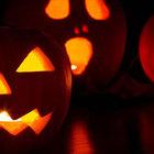 Bimba girava le case per Halloween: colpita da uno sparo. È grave in ospedale