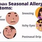Covid o allergia, la differenza: il dipartimento della salute della Florida spiega quale è